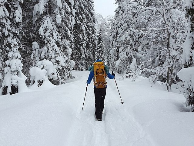Snow Hiking with Trekking Poles